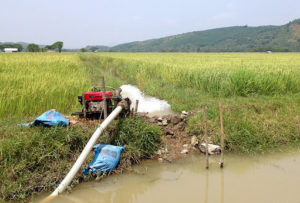 Irrigation Brings Life to Crops