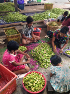 myanmar-fruit-processing Photo Credit: Mateusz Filipski / IFPRI