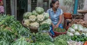 Household dietary patterns and the cost of a nutritious diet in Myanmar