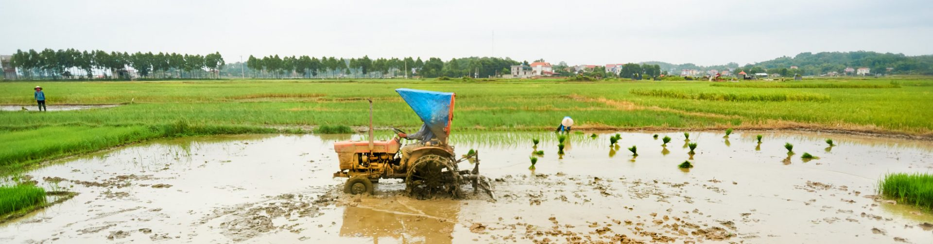 Evolution of agricultural mechanization in Vietnam