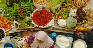 Patterns of regional agri-food trade in Asia