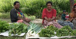 Agri-food trade trends in Papua New Guinea: Reflections on COVID-19 policies and dietary change